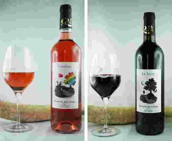 vin-lafage-couleur-suite2-jpg.jpg