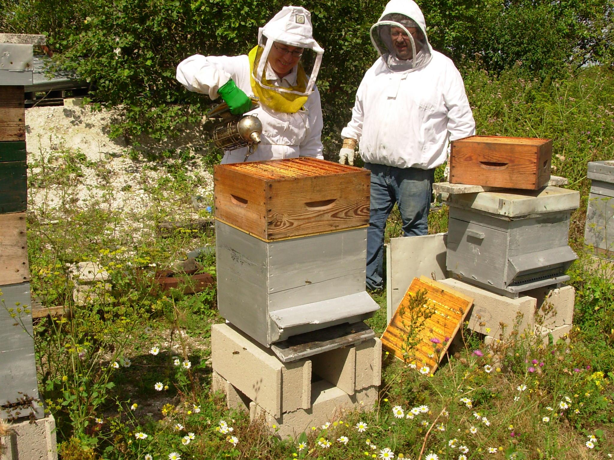 apiculteurs martigues