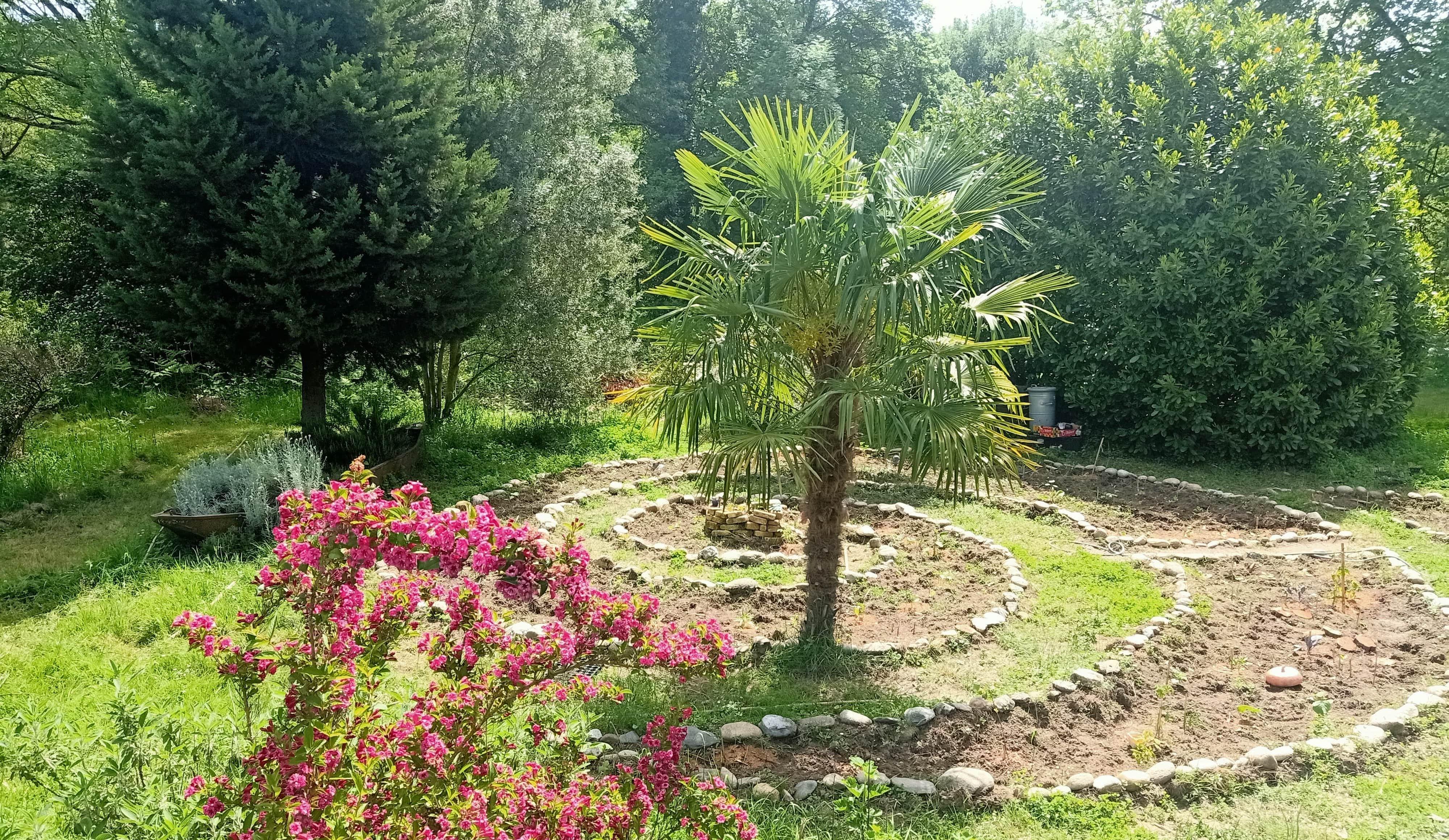 jardin mandala reveas