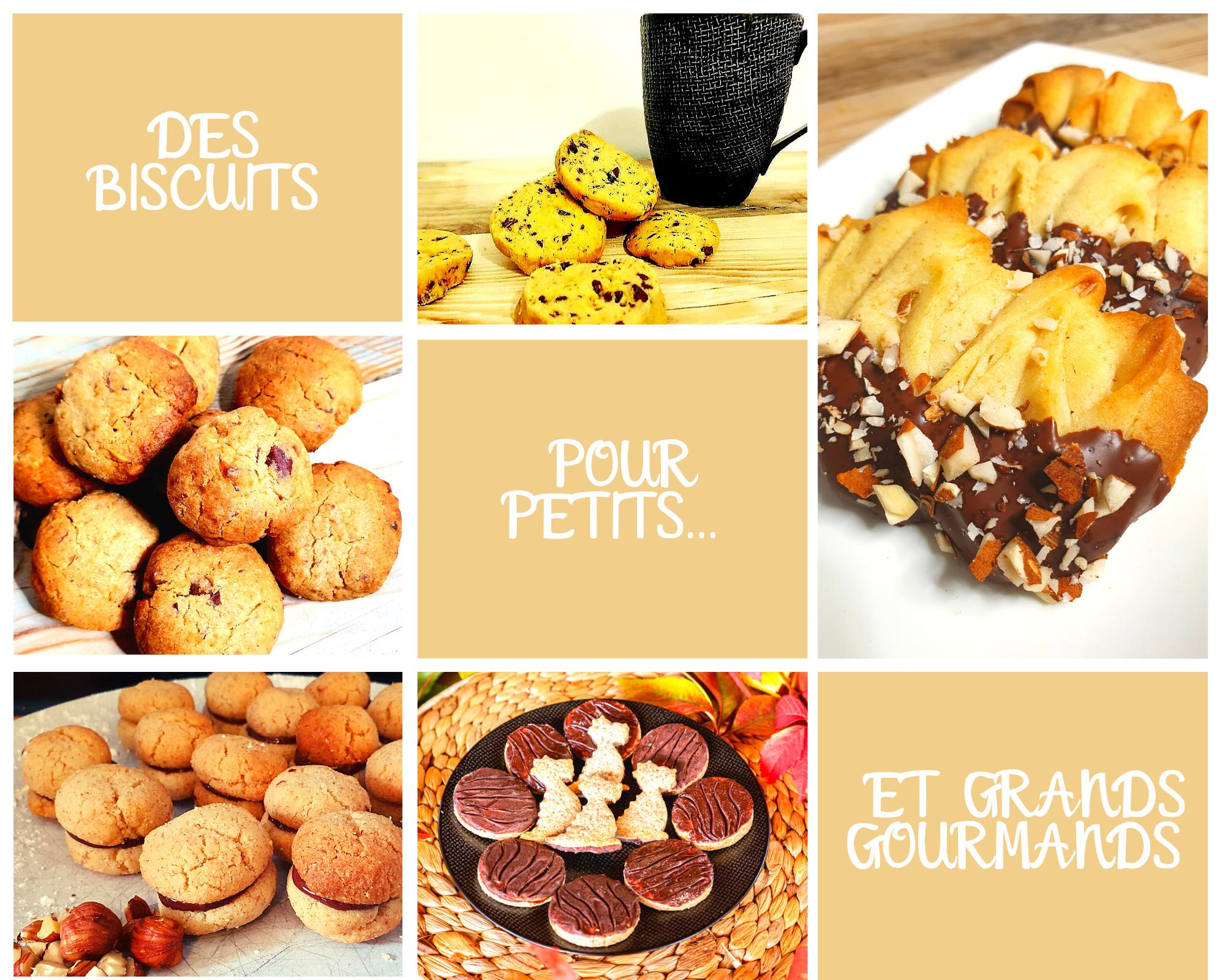 biscuits jardin des pousses