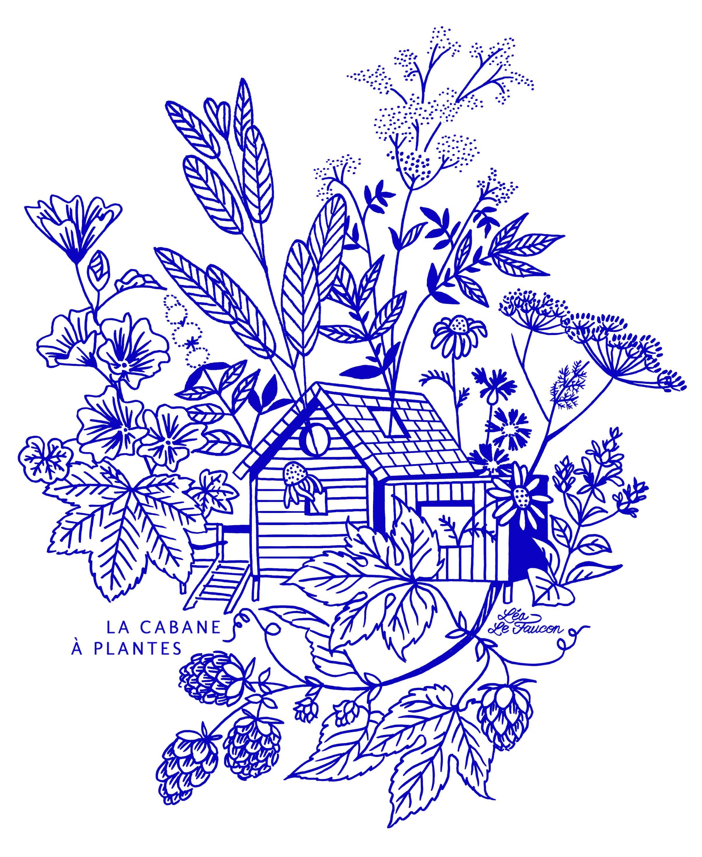 logo cabane a plantes
