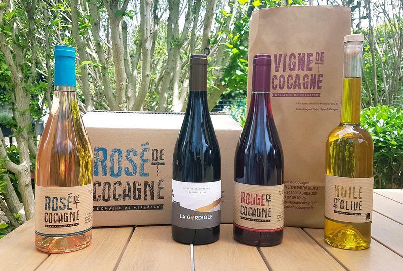 vin vigne de cocagne