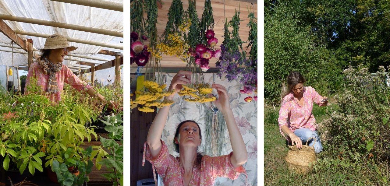 javotte jardins d'yzorche