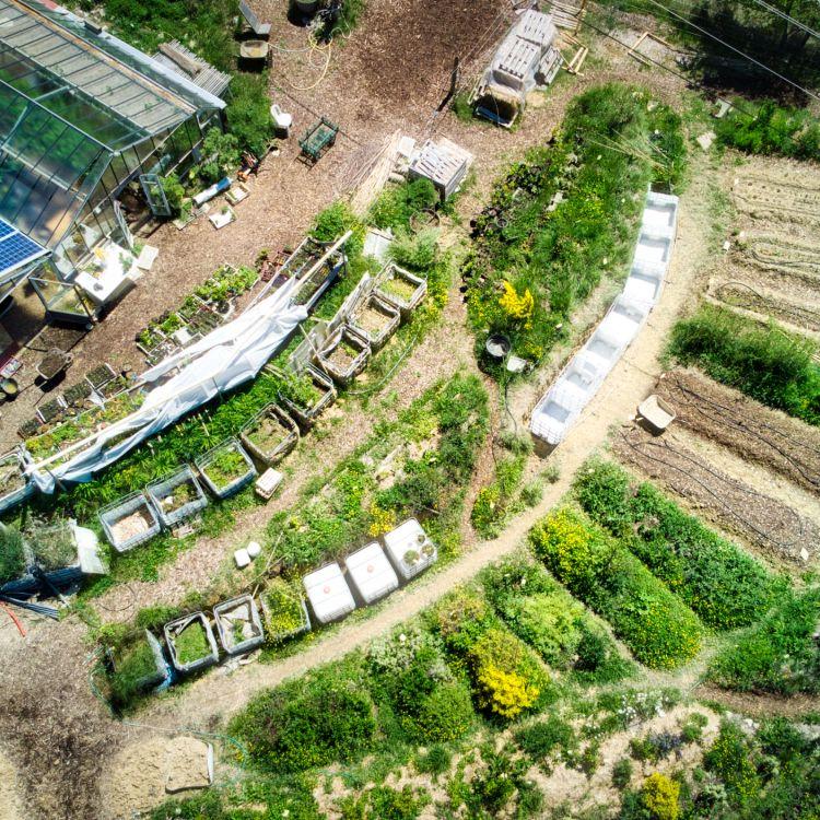 vue aerienne jardin des vignes