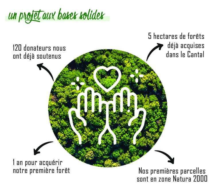 projet foret sauvage